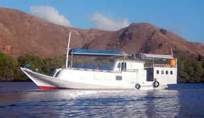 KOmodo snorkeling boat http://www.wickedadventures.com/komodo-snorkeling-tour